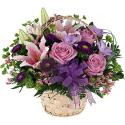 Violetinis krepšelis