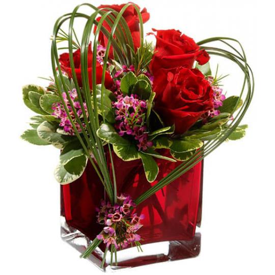 Rožių meilė