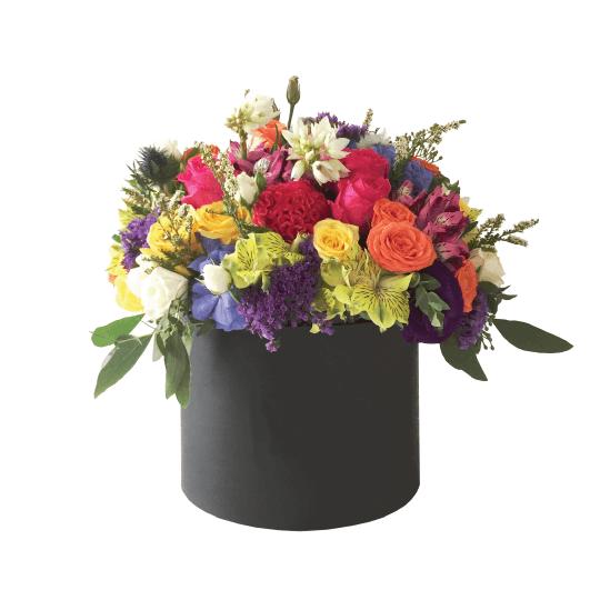 Ryškiaspalvės gėlės dėžutėje