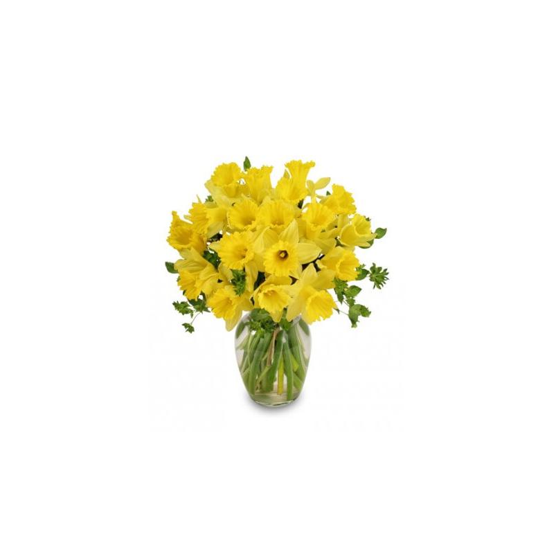 Narcizų puokštė