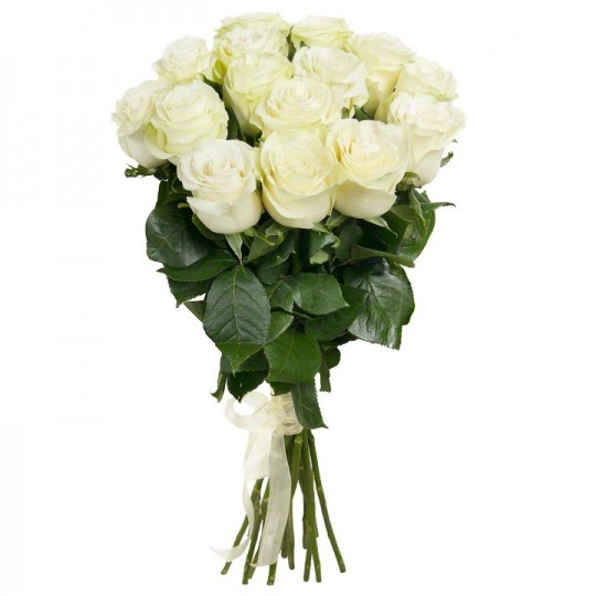 15 White roses (70-80cm)