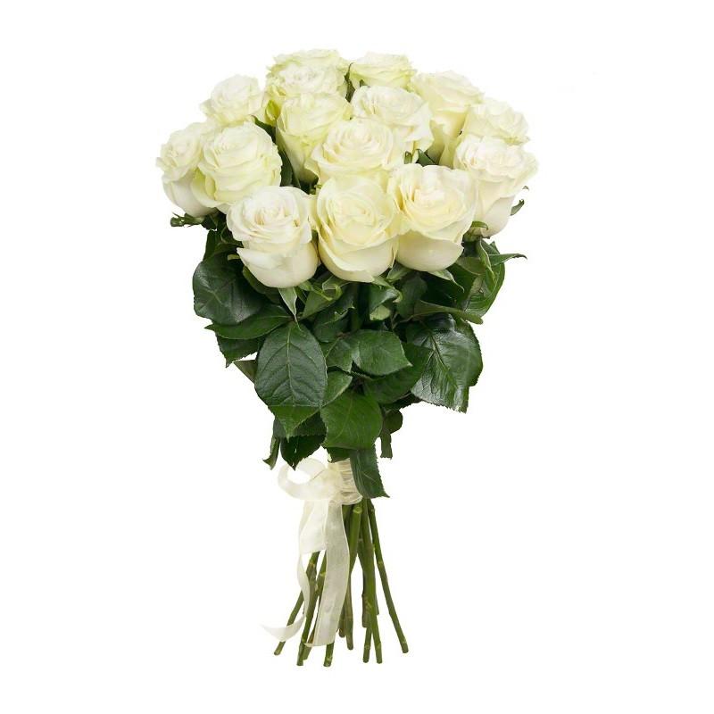 15 Baltų rožių (70-80cm)