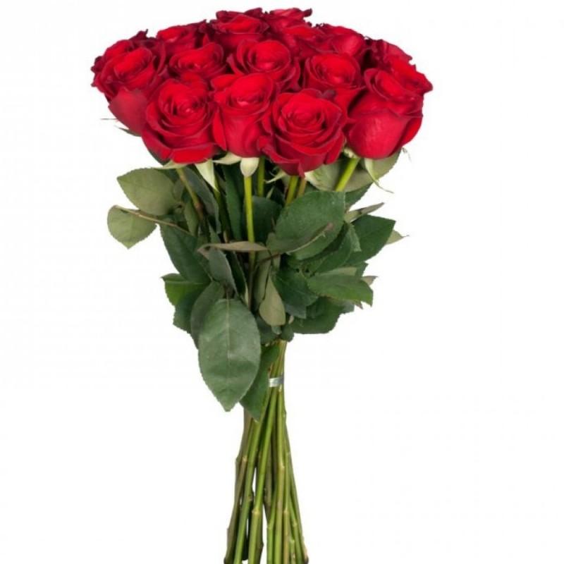 15 Raudonų rožių