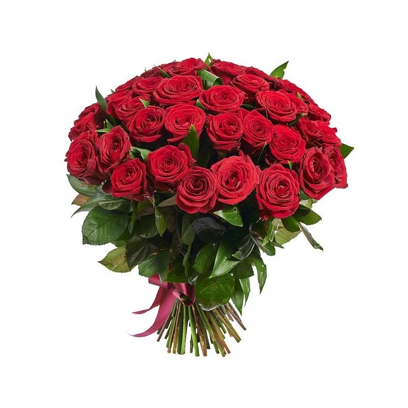 51 Raudona rožė (60-70cm)