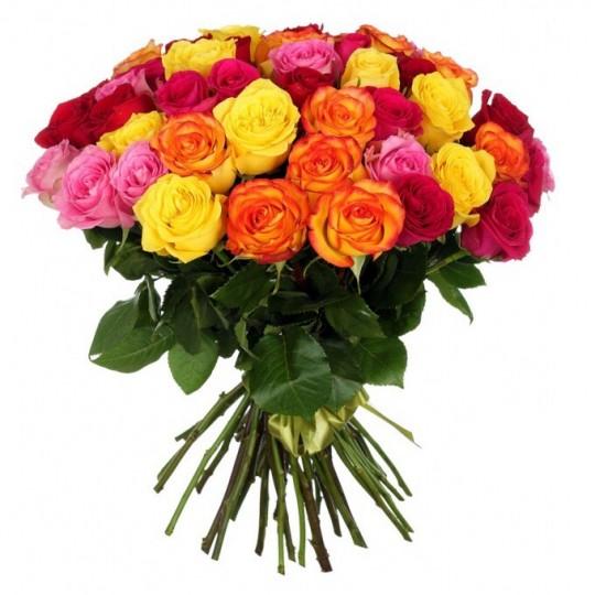 51 Įvairiaspalvių rožių