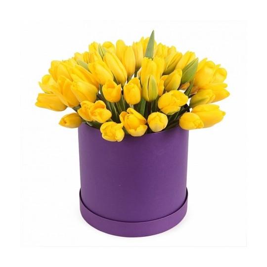 Tulpės dėžutėje