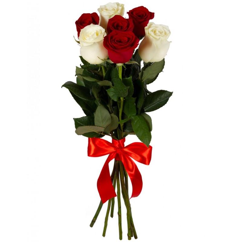 """Raudonų ir baltų rožių """"Mix"""""""